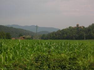 pyrenees17