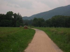 pyrenees18
